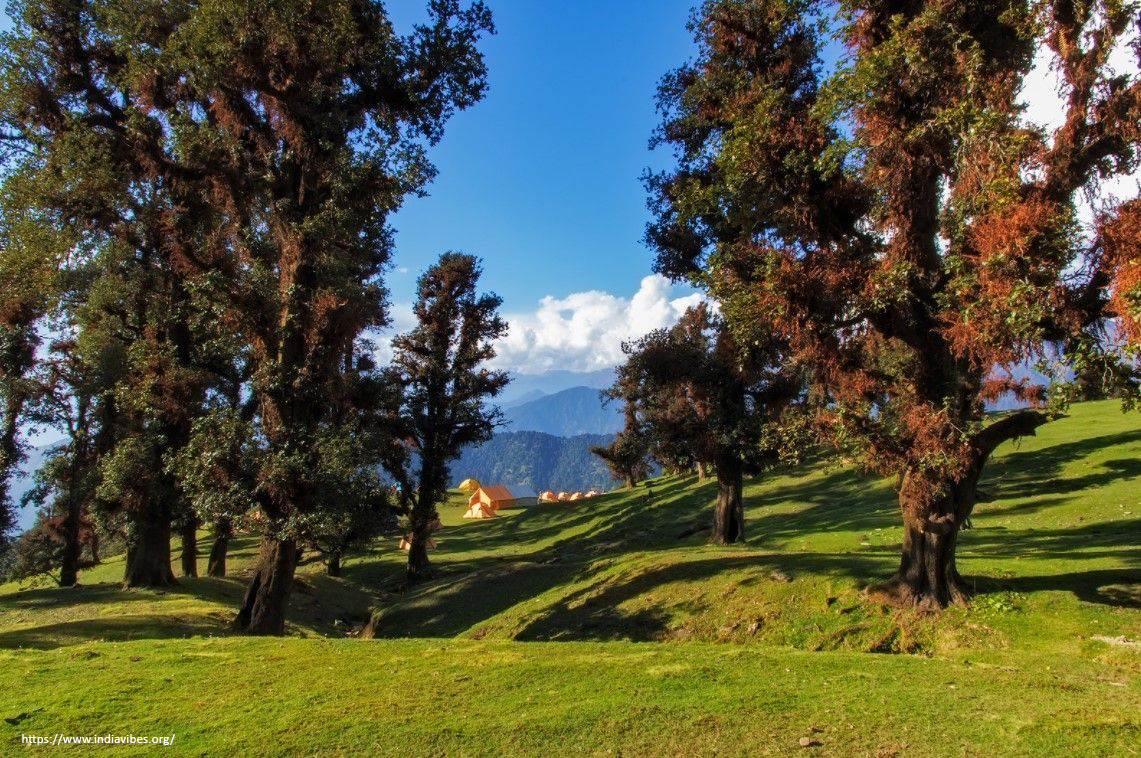 For people looking for perfect time to visit Chopta.